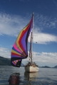 under_sail-optional-spinaker