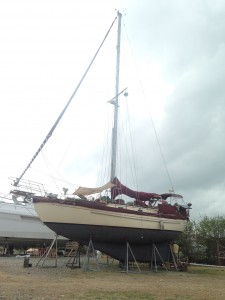Return to Panama, Boat Repairs and a Chicken